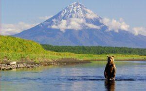 Jezioro Niedźwiedzie – Twoje wymarzone wakacje