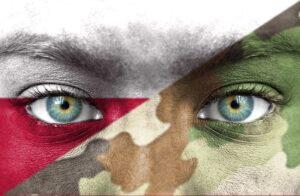 Polska armia po 20 latach w NATO