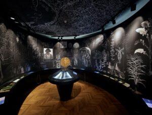 Dom Kopernika w szacie XXI wieku