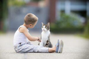 Czy ulec dziecku i kupić mu zwierzątko?
