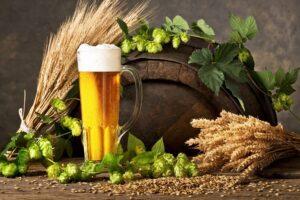 Czy piwo może być probiotyczne?
