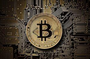 5 najlepszych platform do handlu kryptowalutami
