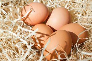 Jajka na Wielkanoc – jakie są najlepsze?